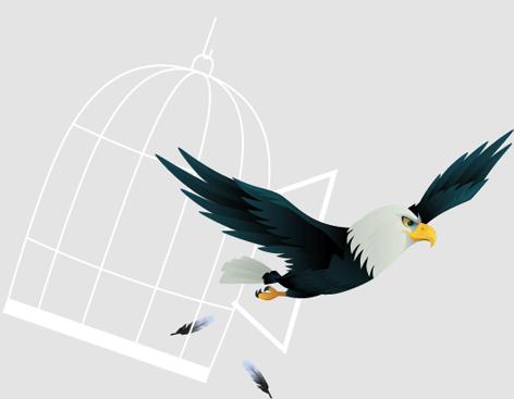 eagle_cage_2